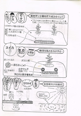 2-2.jpg